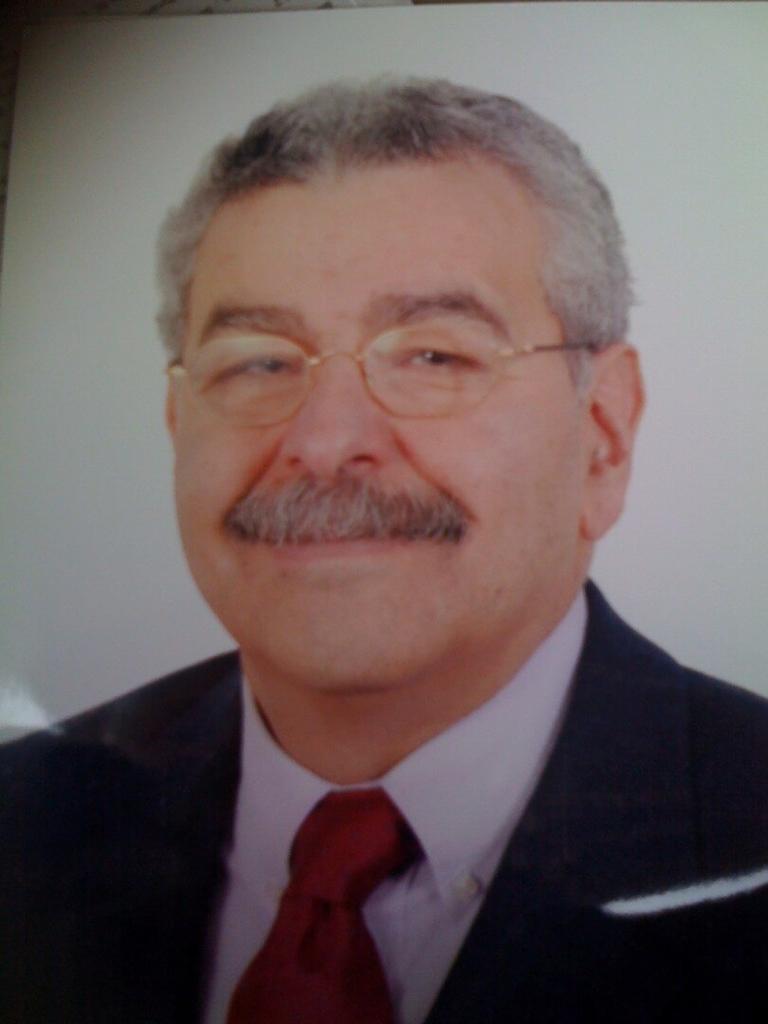 Mohamed Hadi Eltonsi