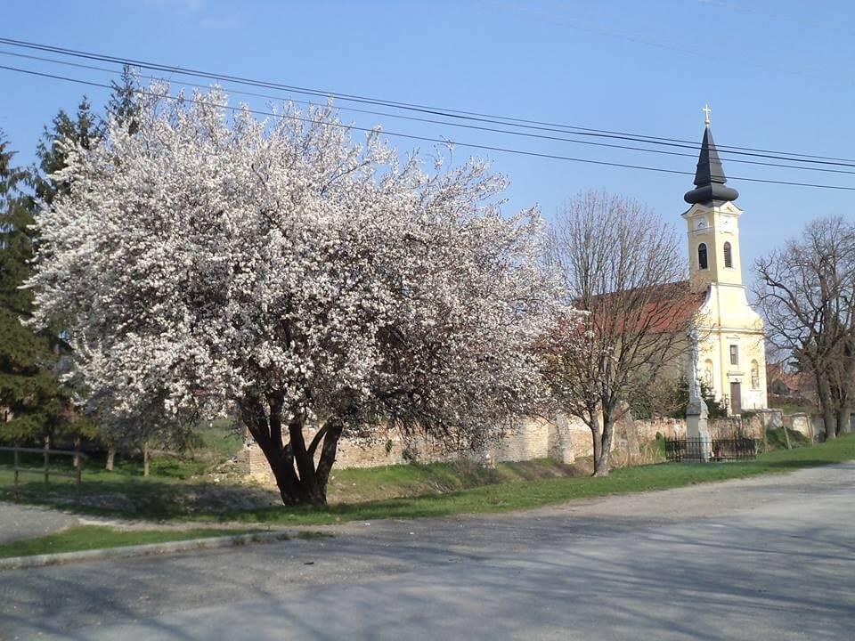 Szent Mihályi templom